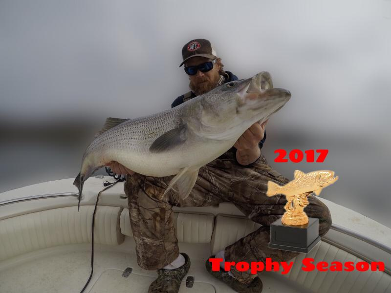 2017 Trophy Season Smith Lake Picture