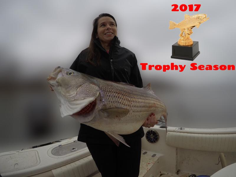 2017 Trophy Striped Bass Trip On Smith Lake