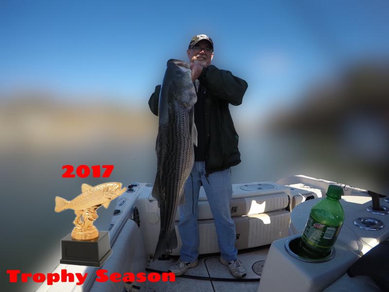 Trophy Striped Bass Caught On Trip 2017