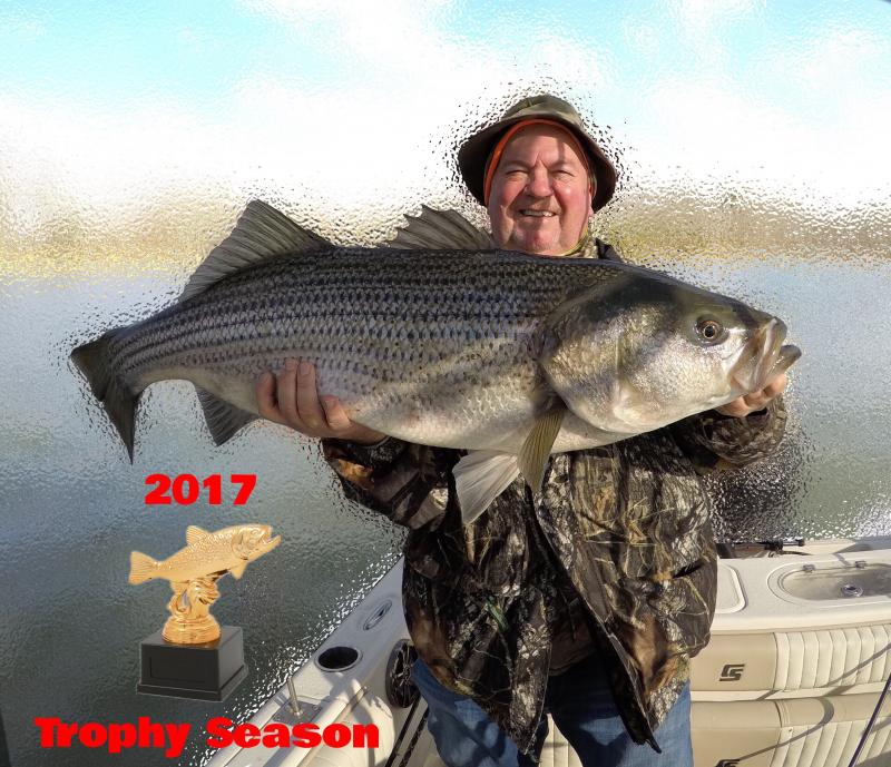 Fishing 24-7 Guide Service - Trophy Striper Trip 2017