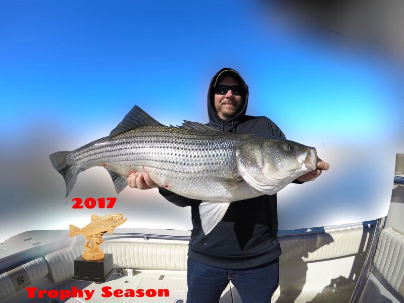 Fishing 24-7 Guide Service - Trophy Striped Bass Trip 2017